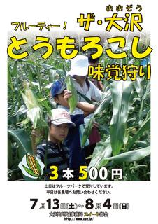 corn_gari2013_1.jpg